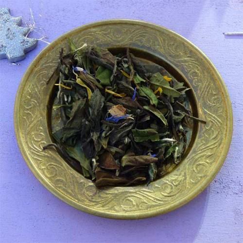 L'étoile du berger, thé blanc en vente