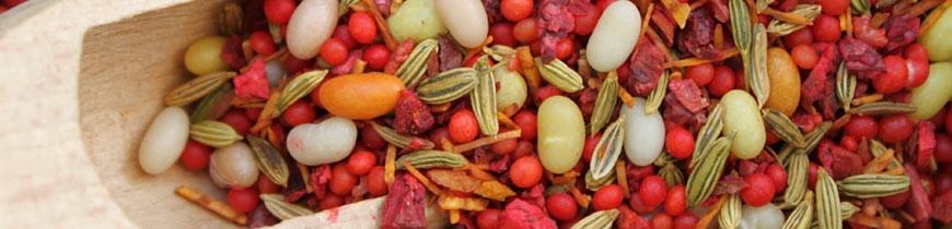 Fruits et plantes du bien-être